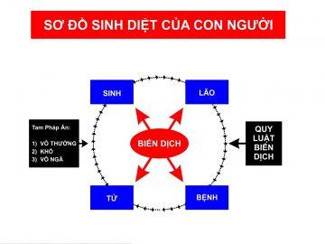 so-do-sinh-diet-cua-con-nguoi