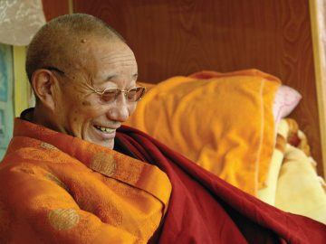 Trulshik Adeu Rinpoche
